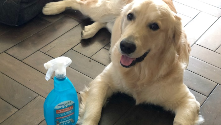 Aquavert Pet Stains and Odor Remover