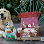 PupBox Holiday Box  Available at Petco