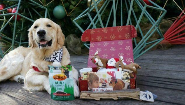 PupBox Holiday Box  Available at Petco