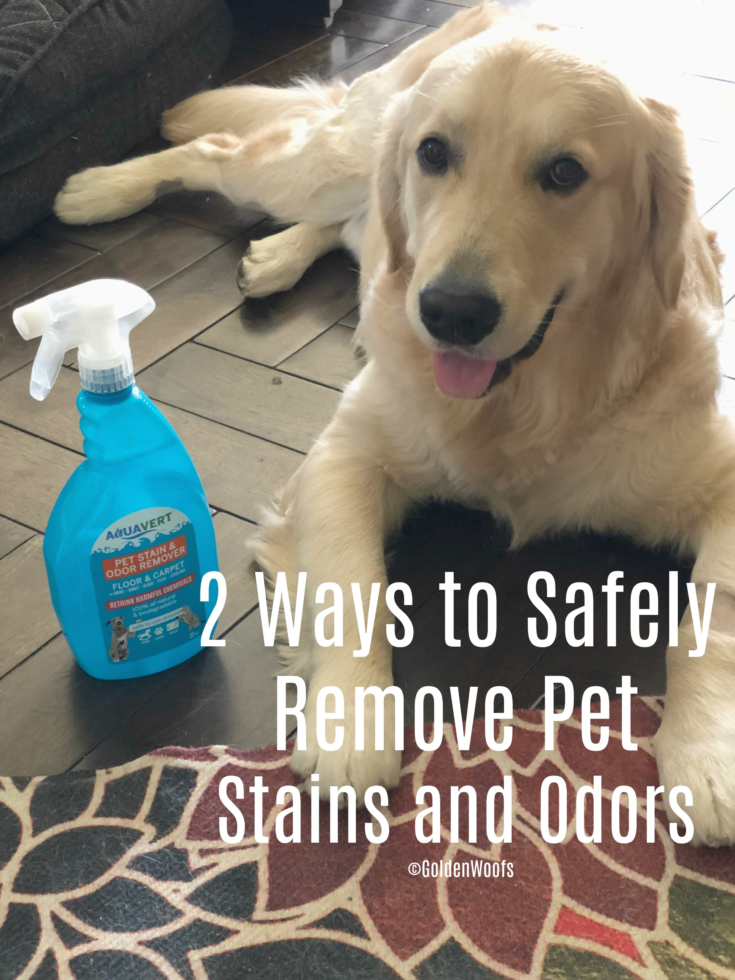 Safely Remove Pet Stains and Odors