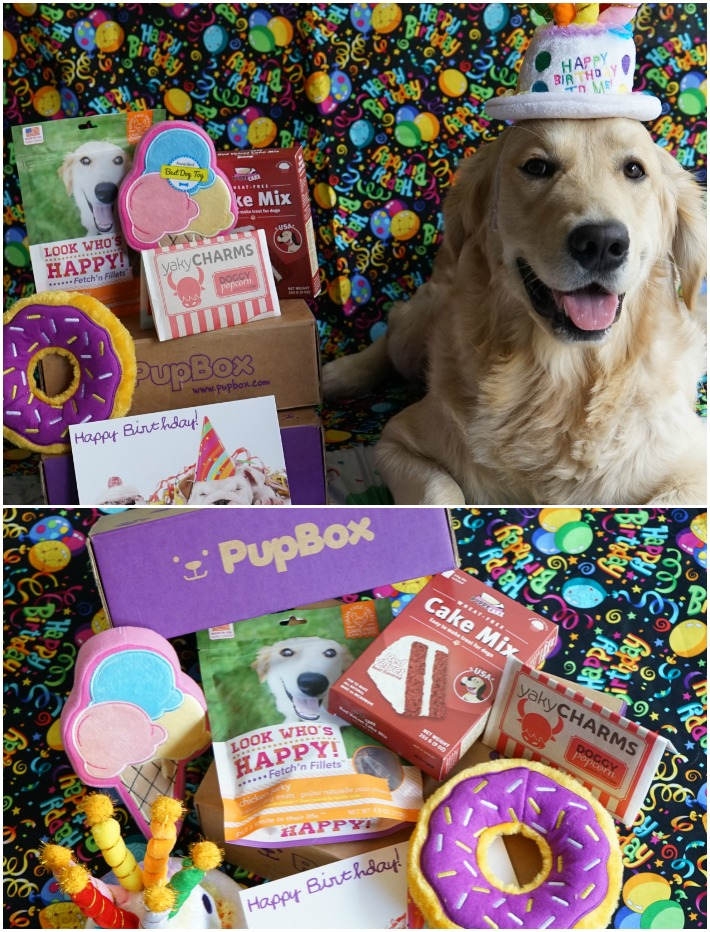 dog birthday pupbox