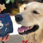 DIY No-Sew Denim Dog Treat Pouch #BlueBuffalo
