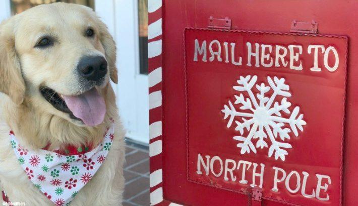 Have a Letter for Santa?
