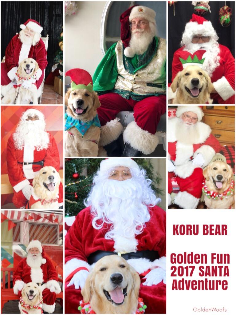 Golden Retriever Santa Adventure (Santa Paws)