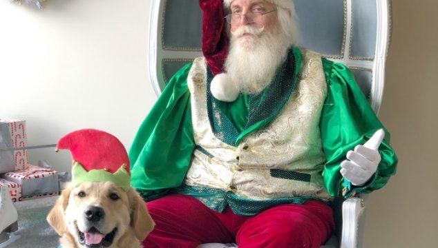 KORU BEAR Met A Regal Santa
