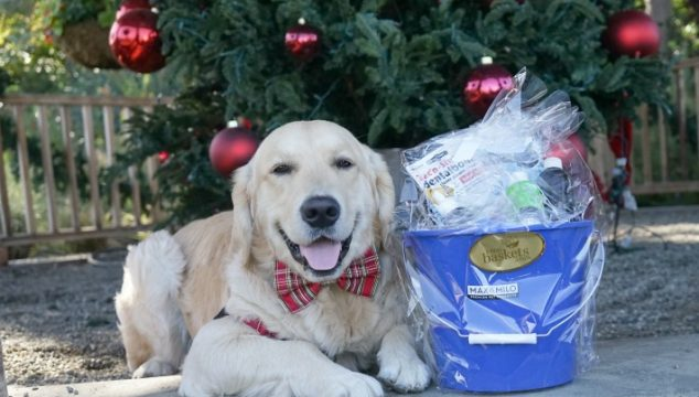 Gift baskets from 1-800-Baskets Max & Milo Collection