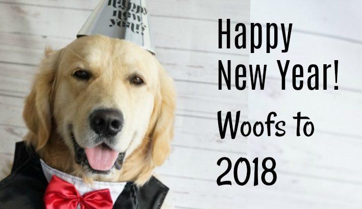 Golden Wink 2018! Happy New Year