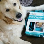 Your Dog Needs A Fun Feeder SloBowl #ChewyInfluencer