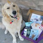 Positive Resolutions for the Best Year Ever #PupBox