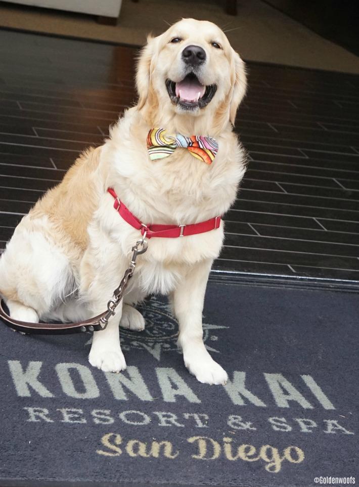 Pet Friendly Kona Kai Resort San Diego