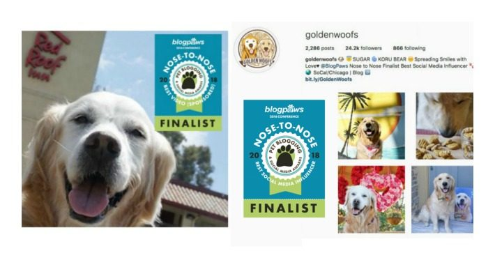 Finalist in the 2018 BlogPaws Nose to Nose Awards