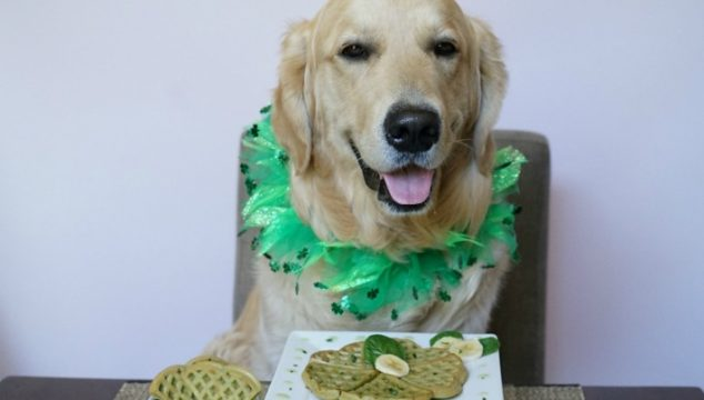 Share With Your Dog: Spinach Banana Waffles