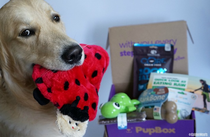 PupBox Eating Raw March Box