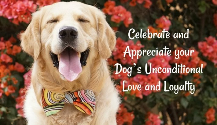Celebrate and Appreciate your Dog's Unconditional Love and Loyalty