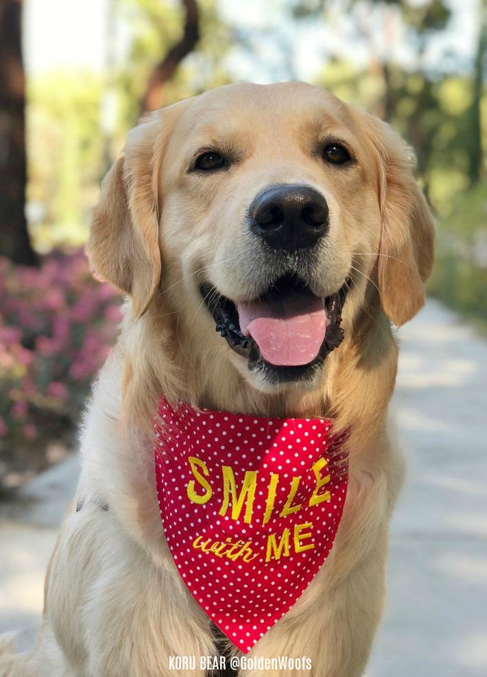 Smile With Me KB Spreading Smiles