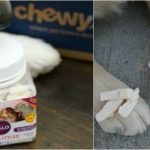 Halo WHOLE Ingredients | the Proof is in the Poop #ChewyInfluencer