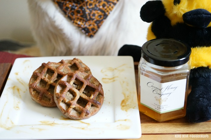 Peanut Butter Honey Dog Waffles dog treat recipe