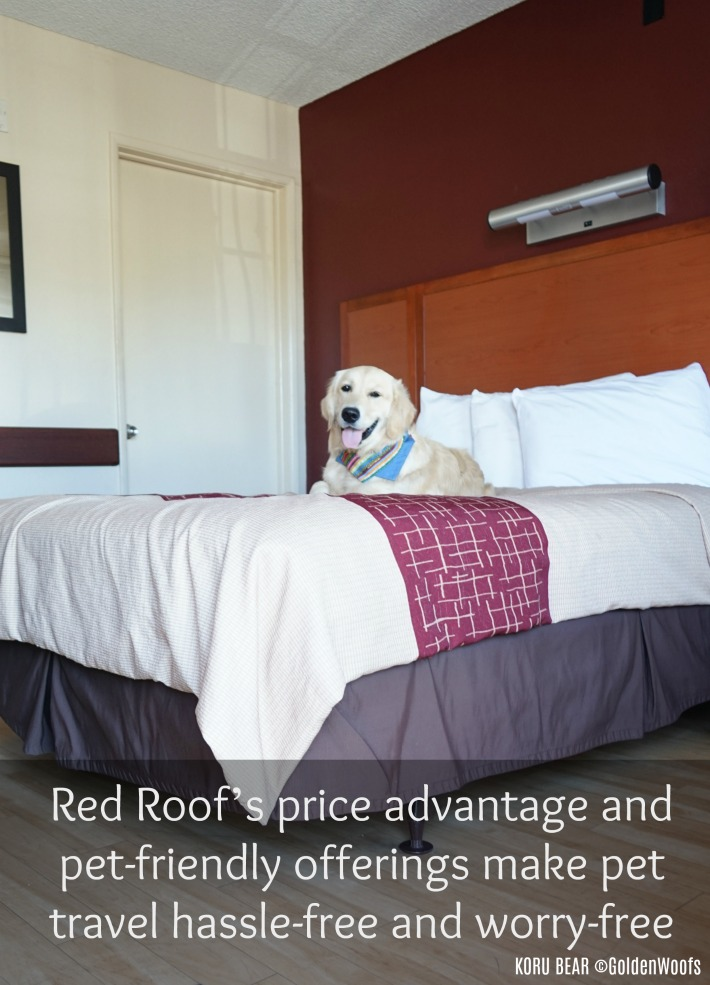 Pets Stay Free No Hassle Red Roof Inn