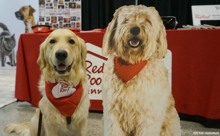 Red Roof Inn You Stay Happy, Pets Stay Free #RedRoofLuvsPets