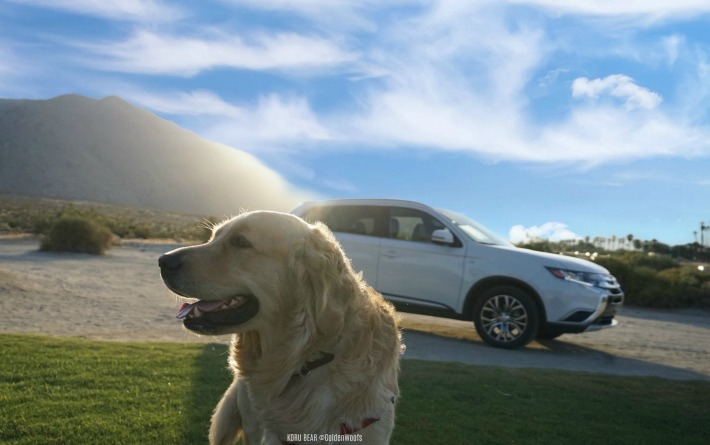 dog friendly Mitsubishi Outlander