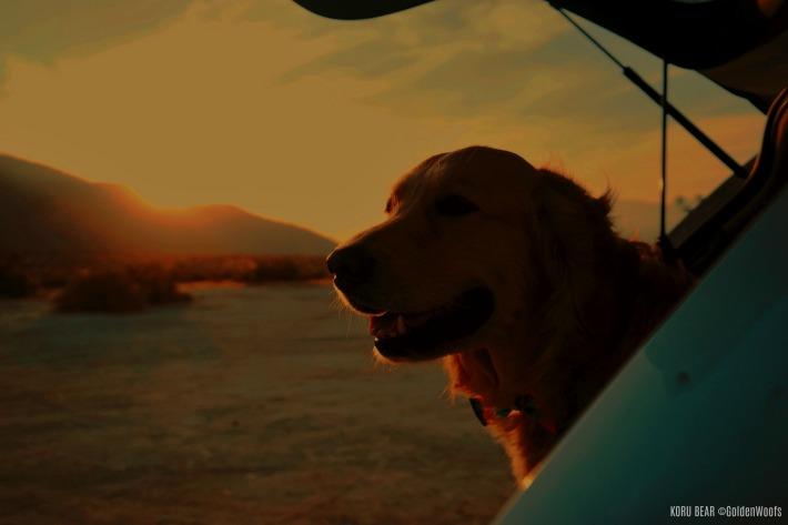 sunset Mitsubishi Outlander