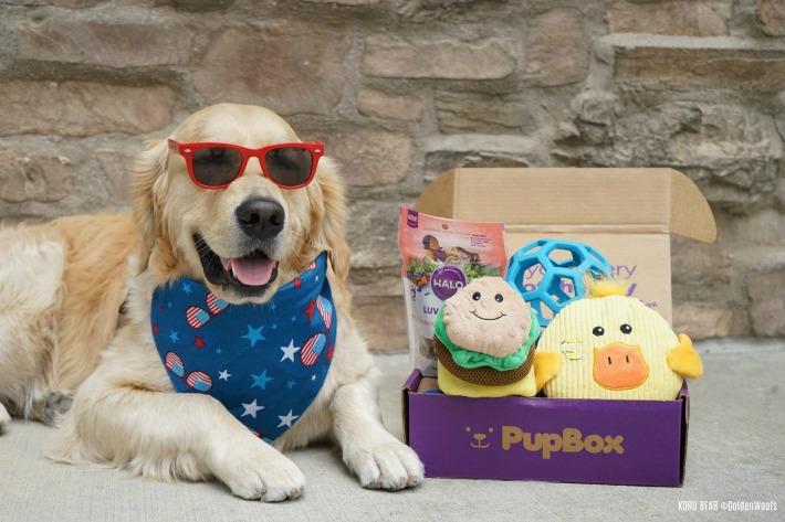 Puppy Selfie PupBox