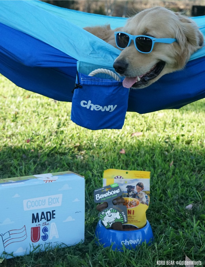 Chewy.com Goody Box Dog Treats