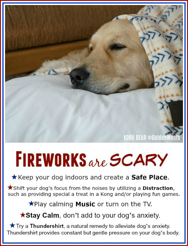 Infographic Fireworks are scary