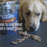 T for Dr. Tim's Turkey Treats #ChewyInfluencer