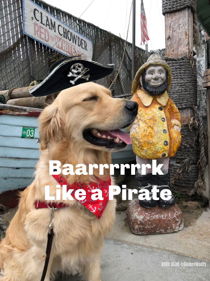 Bark LIke a Pirate