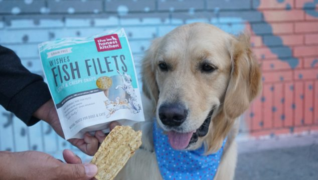 Super Tasty Dehydrated Fish Filets Dog Treats #ChewyInfluencer