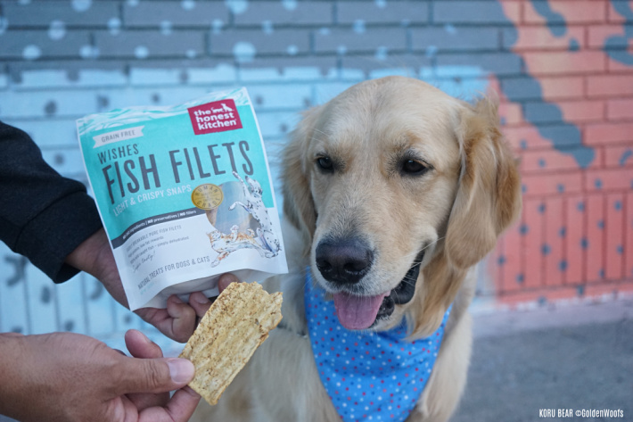 Honest Kitchen Wishes Dehydrated Fish Filets Dog Treats