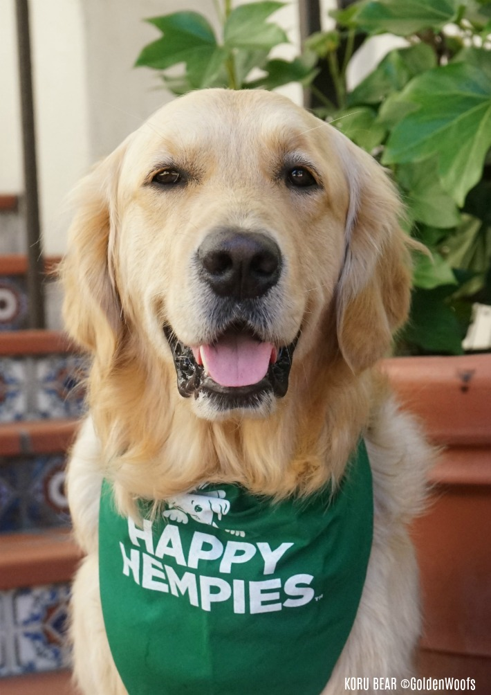 Happy Hempies HEMP Dog Chew Supplements