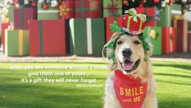 Gift of Smile