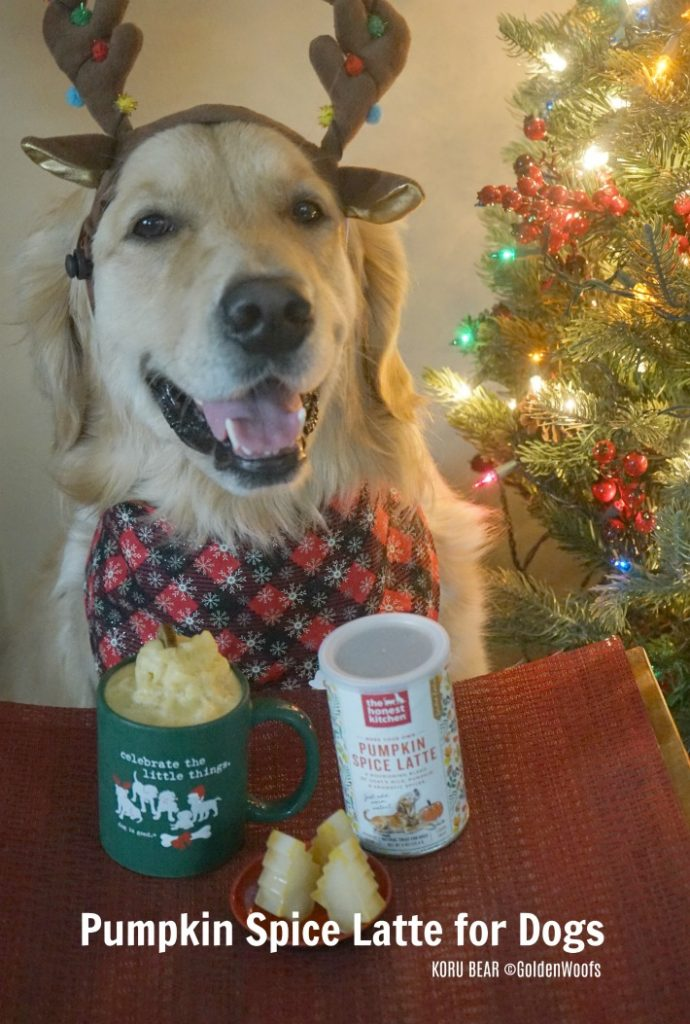 Pumpkin Spice Latte for Dogs