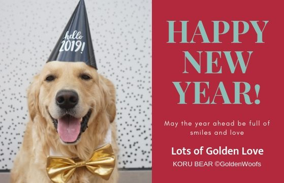 Hello 2019 Golden Woofs Happy New Year