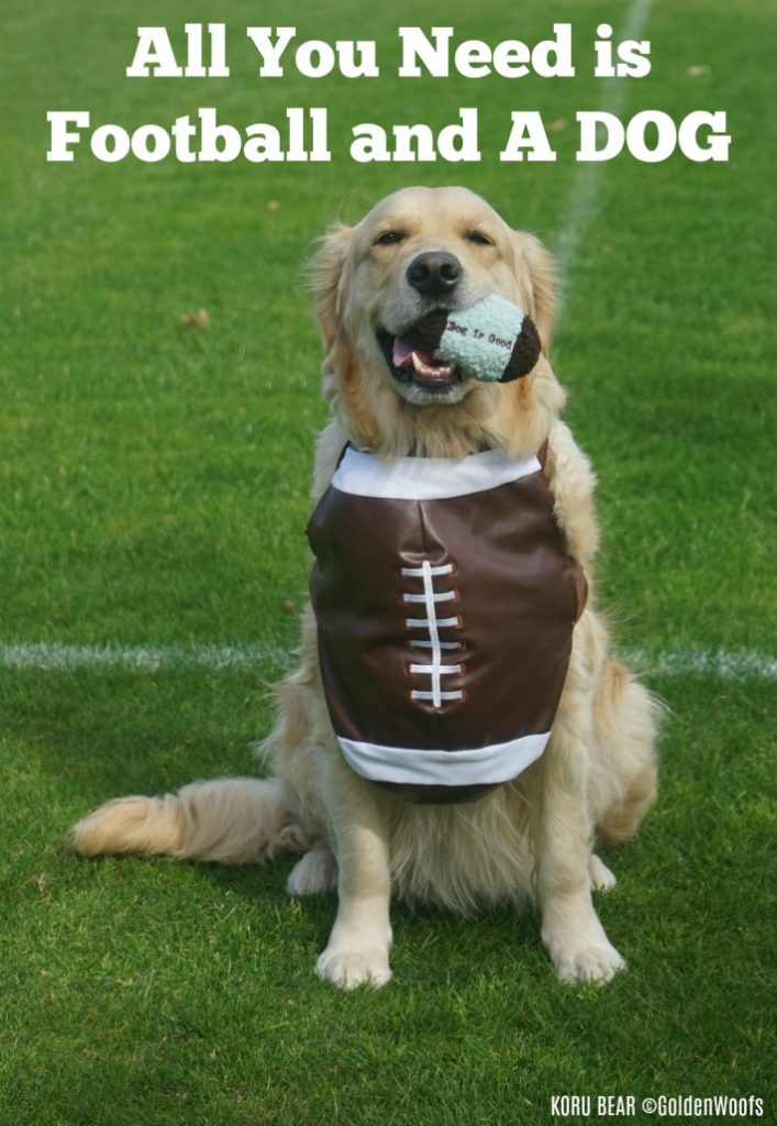 All You need is Football and A DOG