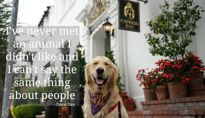 I've never met an animal I didn't like …