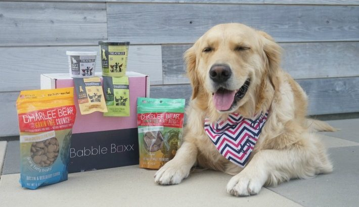 All About Dog Treats Babble Boxx Pets