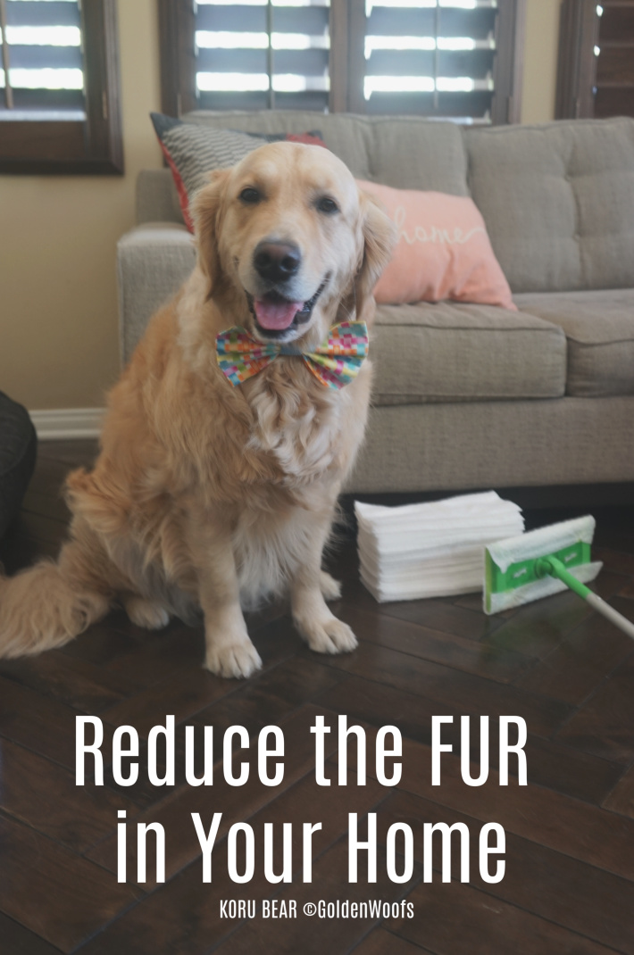 Swiffer Reduce FUR Dog Shedding
