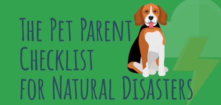 Pet Parent Checklist for Natural Disaster