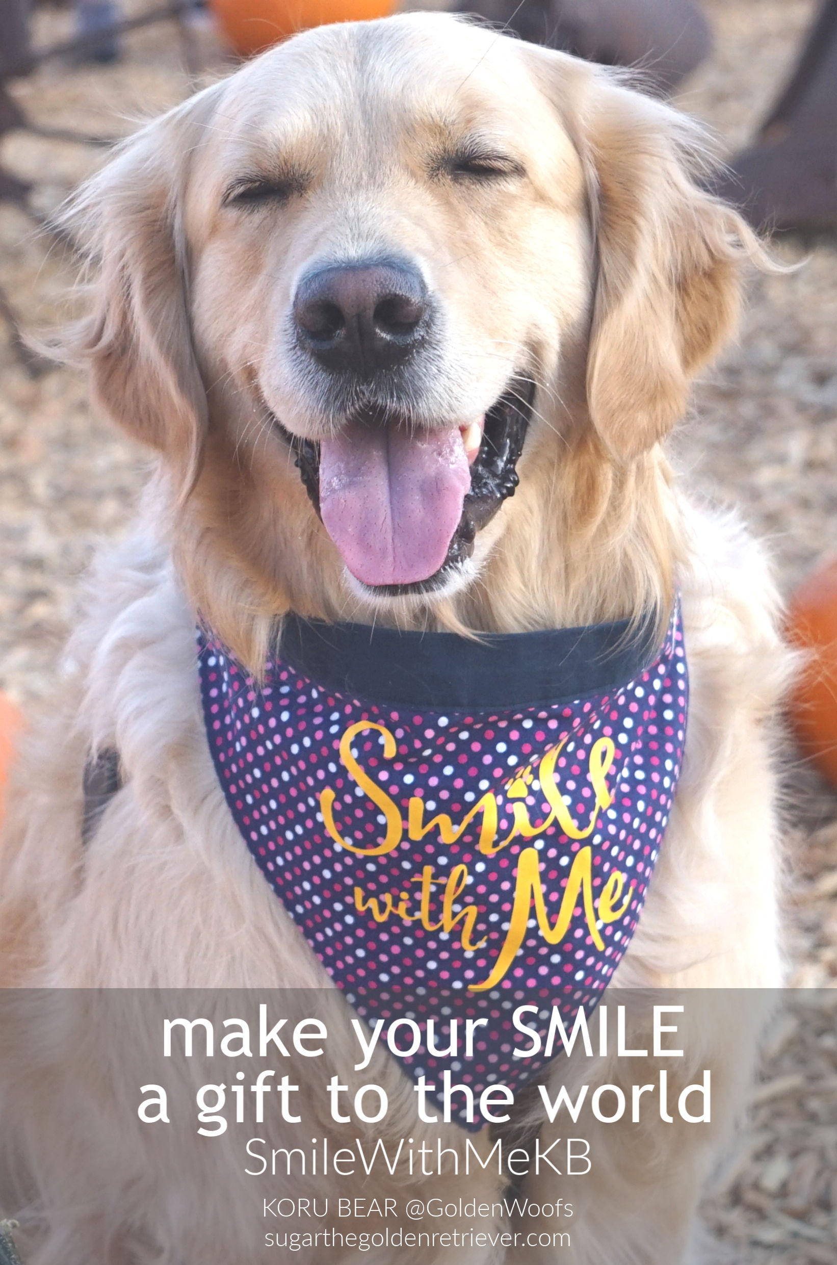 smile with me world smile day