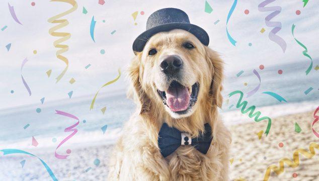 Spread SMILES Around Like Confetti ... Happy New Year!