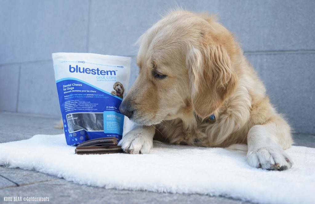 bluestem dog dental treats