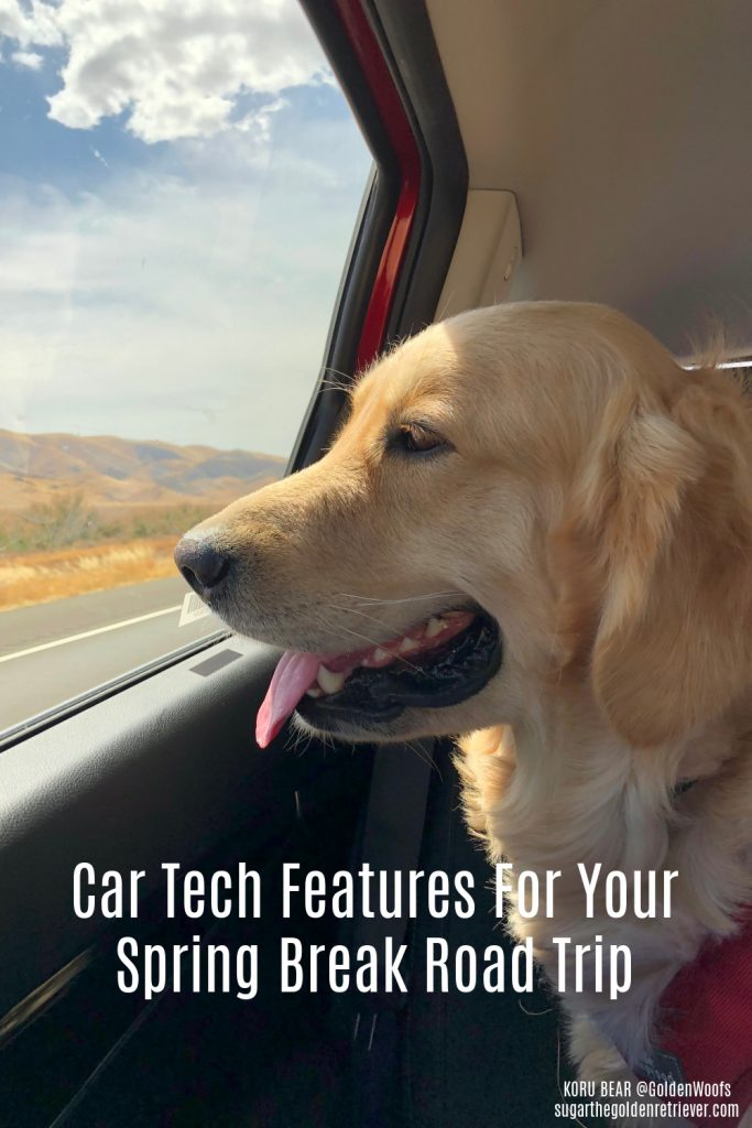 Autotrader Car Tech Features Dog-Friendly Spring Break Destinations