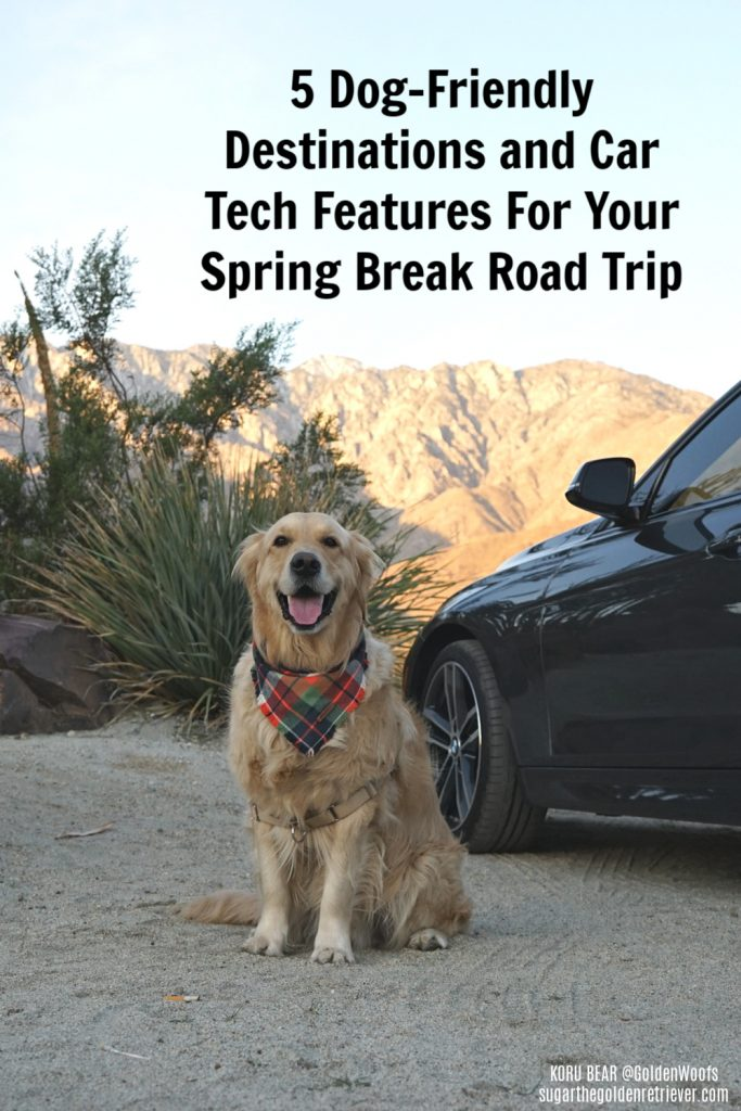 Autotrader Dog-Friendly Destinations