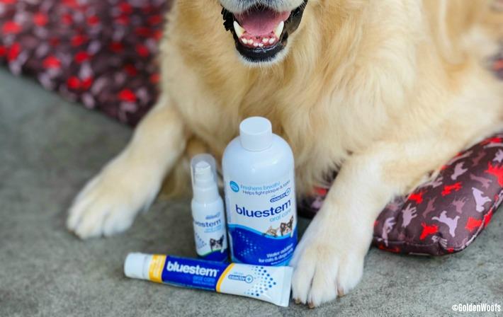bluestem oral care products