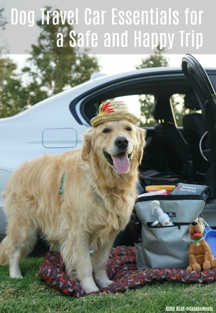Autotrader Dog Travel Car Essentials