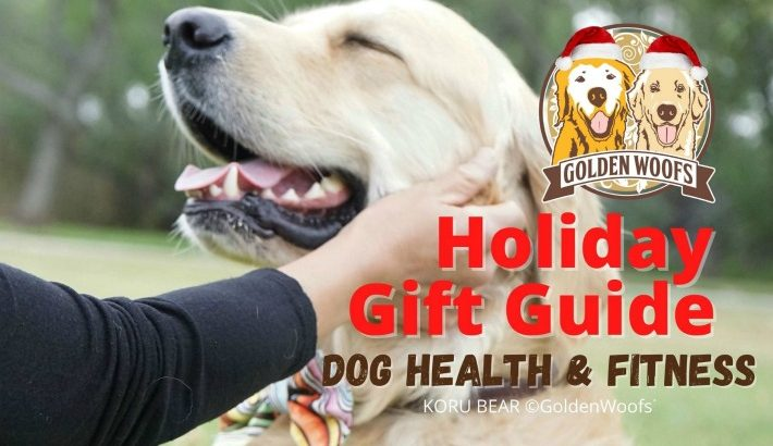 2020 Holiday Gift Guide: Dog Health & Fitness