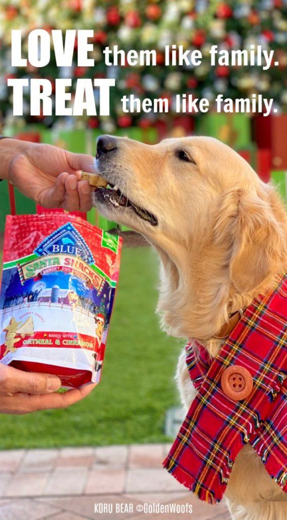 Blue Buffalo Santa Snack crunchy dog biscuits | Love them like family. TREAT them like family.